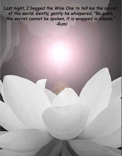 wrapped in silence