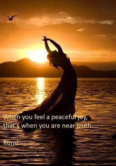 Peaceful Joy