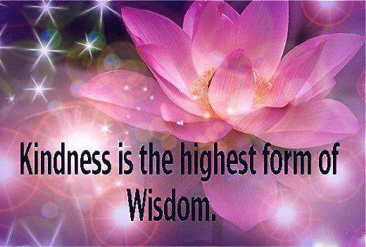 Kindness is the Highest Form of Wisdom
