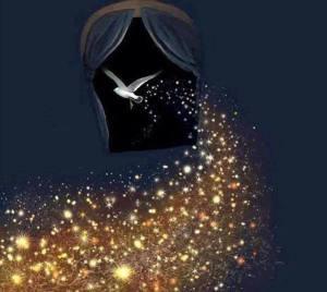 stars and white bird